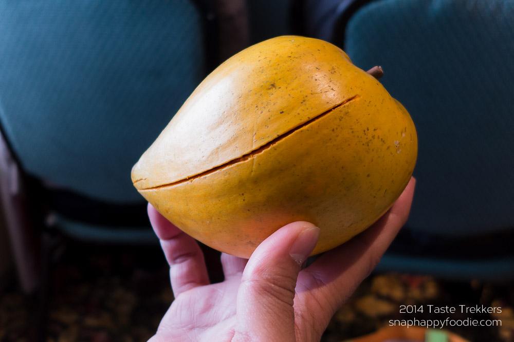Canastra or Egg Fruit