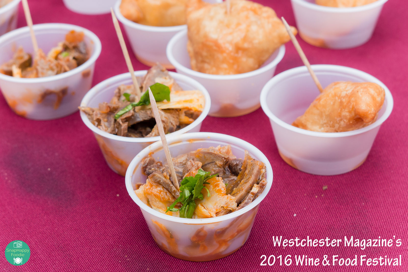 2016westchestermagwinefoodfest-18