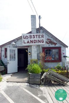 Eating Out: Lobster Landing | Clinton, CT