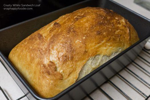 Yummy Experiment #7: Crusty White Sandwich Loaf